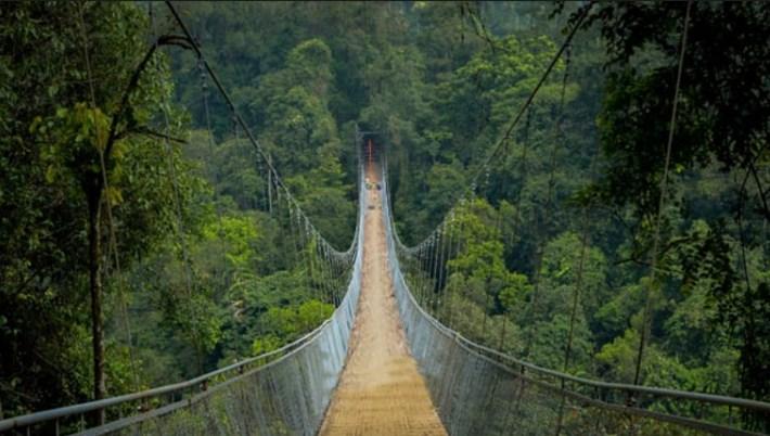 Jembatan Gantung Situ Gunung Curug Sawer Sukabumi