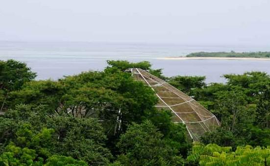 Taman Nasional di Pulau Bali, NTB dan NTT
