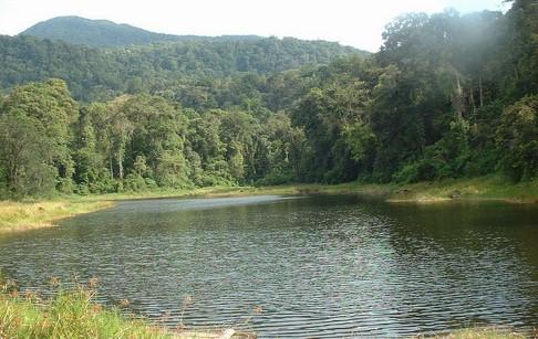 Taman Nasional Batang Gadis