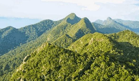Image Result For Taman Nasional Bukit A