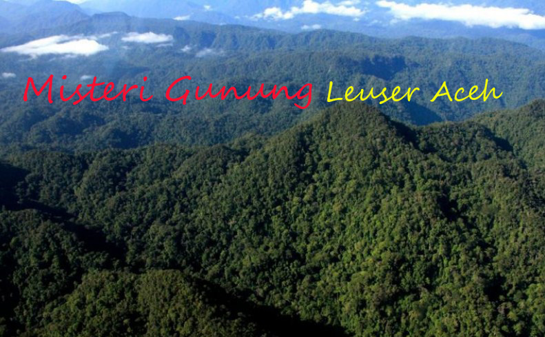 Fakta dan Misteri Gunung Leuser Aceh