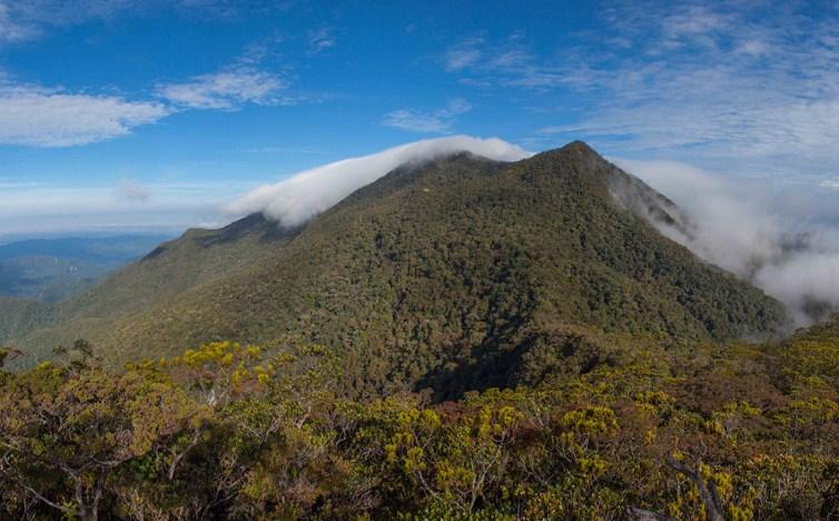 Informasi Lengkap dan Biaya Mendaki Gunung Trusmadi