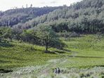 Syarat Mendaki Gunung Lawu Via Candi Cetho Saat Pandemi Virus Corona
